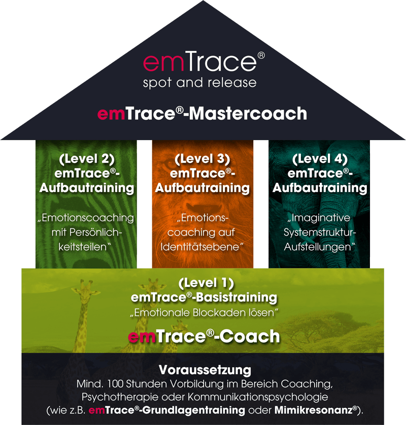 EMKO Institut Köln Siegburg Coaching emTrace Ausbildung